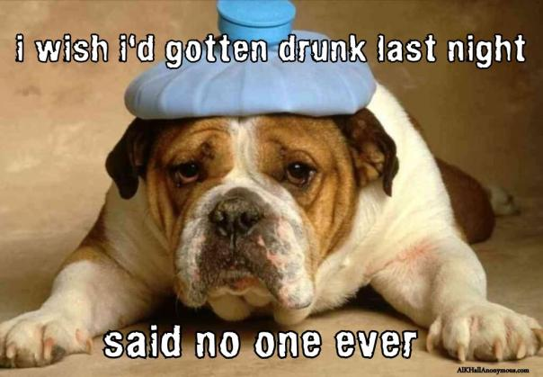 Used 2013-11-02 i should've got drunk last night (AlKHall sobreity recovery meme)