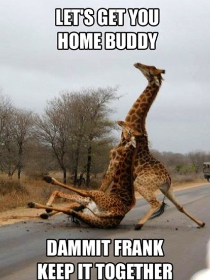 Used 2014-04-27 Good Giraffe - Bad Giraffe (AlKHall sobriety recovery)